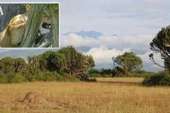 naturparks_uganda_08n